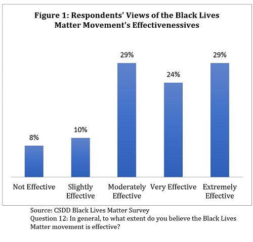 Respondents' Views of the Black Lives Matter Movement's Effectivenessives
